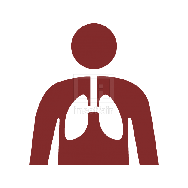 Health and medical lungs vector flat PNG icon