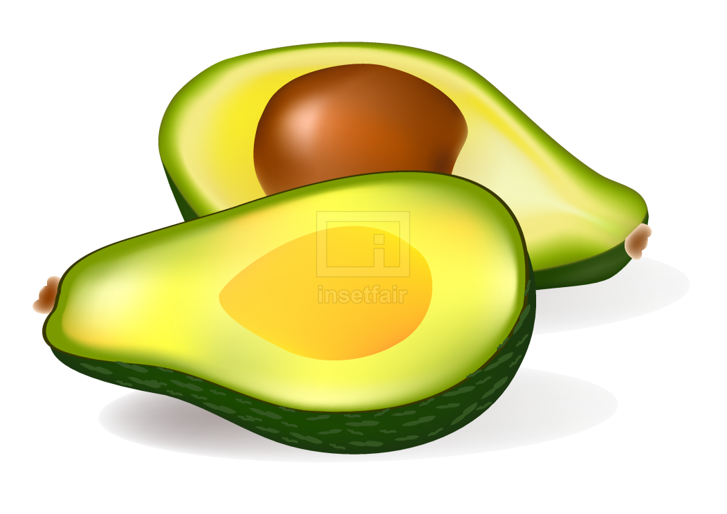 Avocado with seed PNG Vector Clipart Image