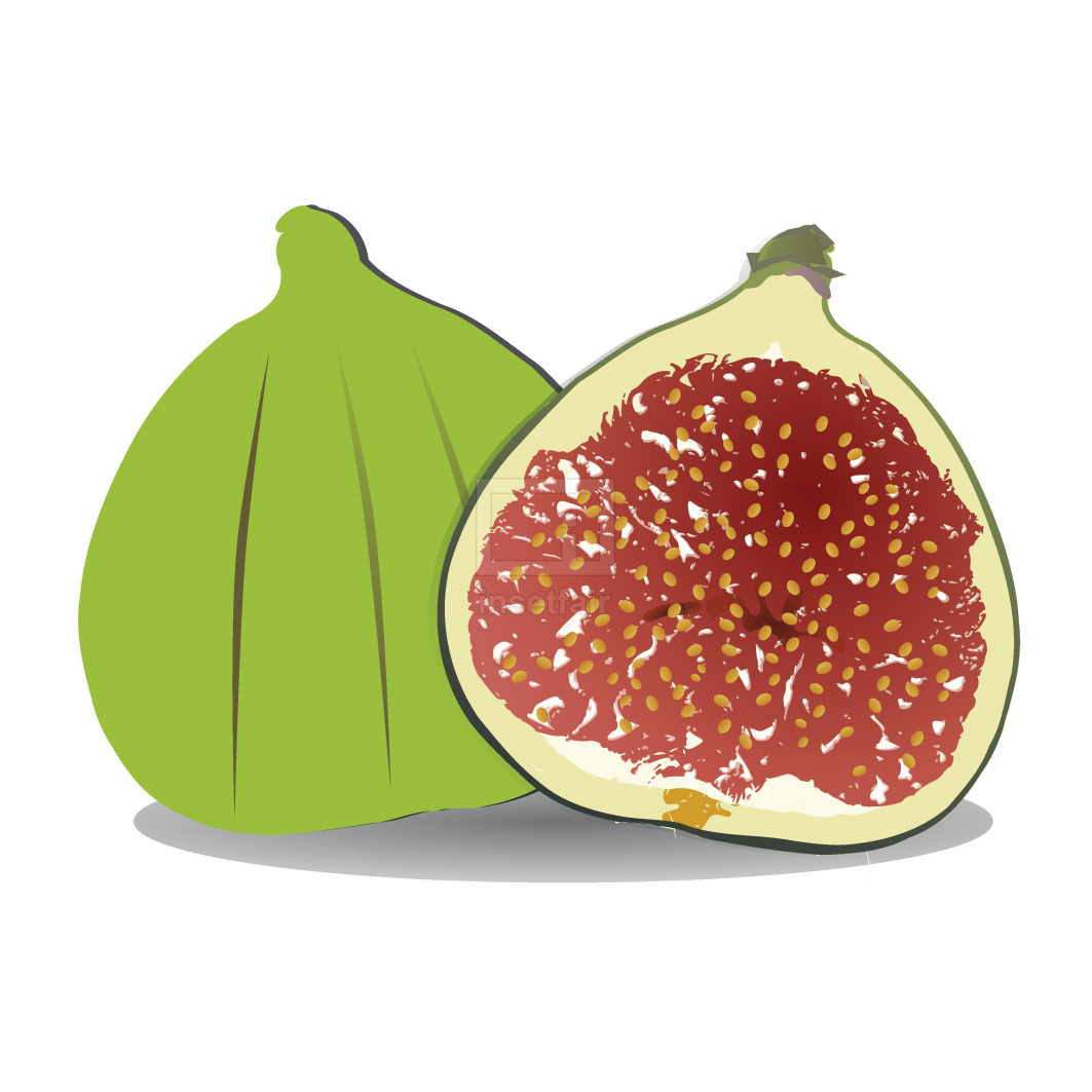 Cartoon Fig fruit vector png image free at insetfair