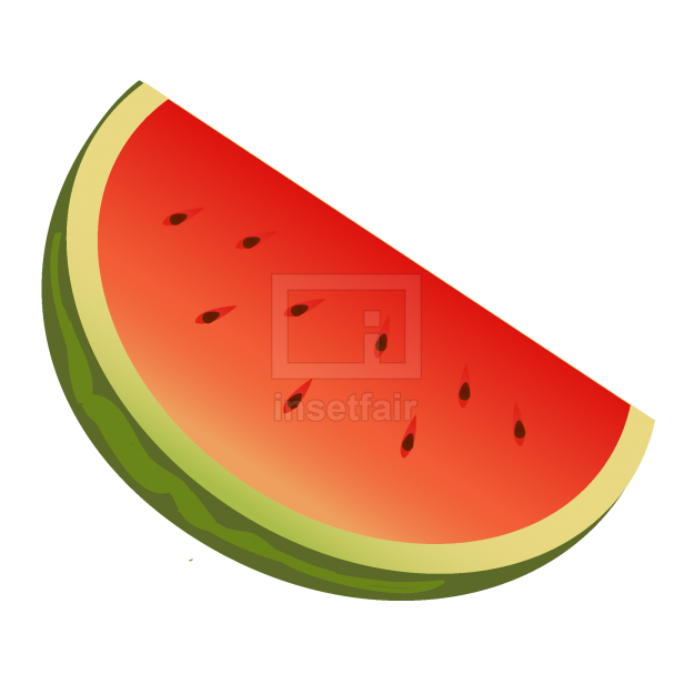 Water melon vector fruit slice with sweet red flesh and seeds