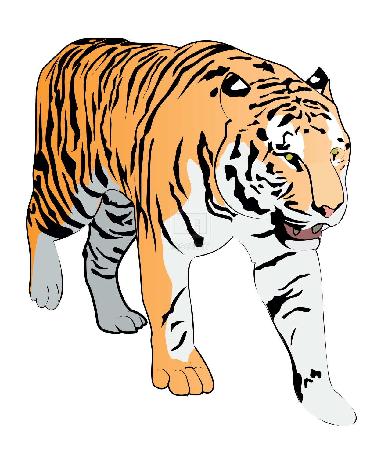 Mature tiger gentle walk with Adobe illustrator free for commercial use