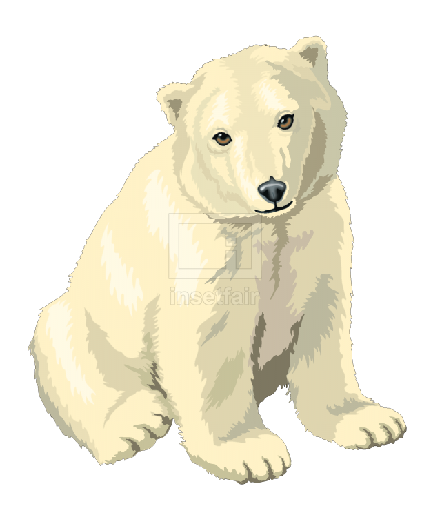 Realistic polar bear drawing in sitting position vector free for commercial use