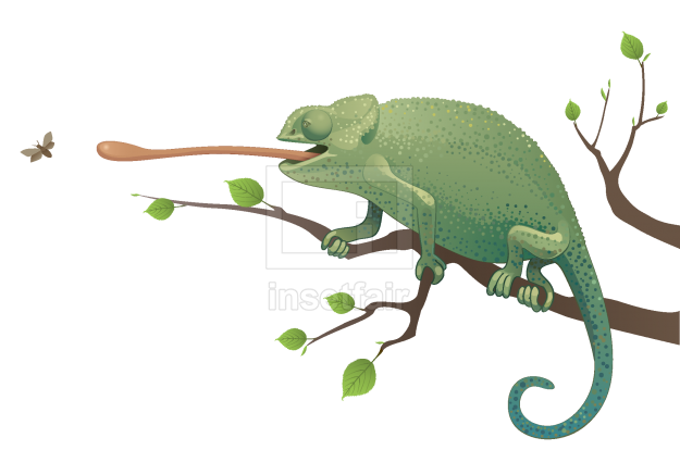 Chameleon hunting a insect sitting on the tree vector