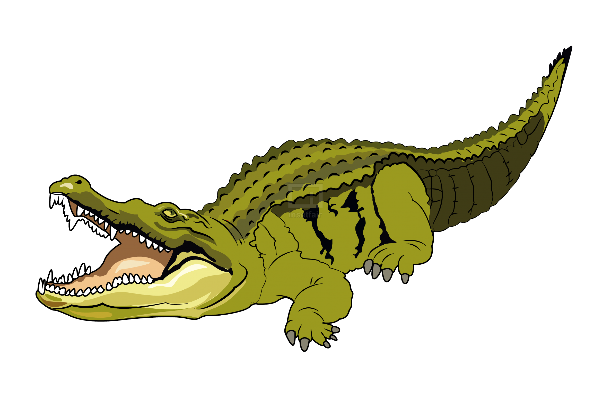 Illustration of Cartoon crocodile vector drawing