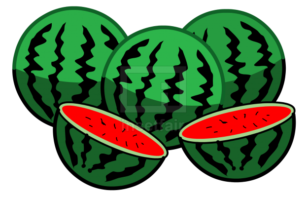 Watermelons fruit vector drawing fla royalty free png image