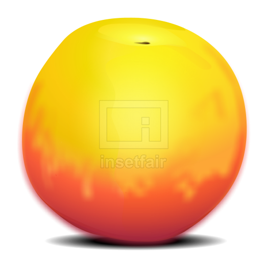 Peach fruit vector drawing fla royalty free png image