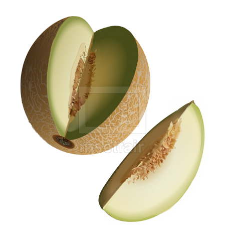 Mellon fruit vector drawing fla royalty free png image