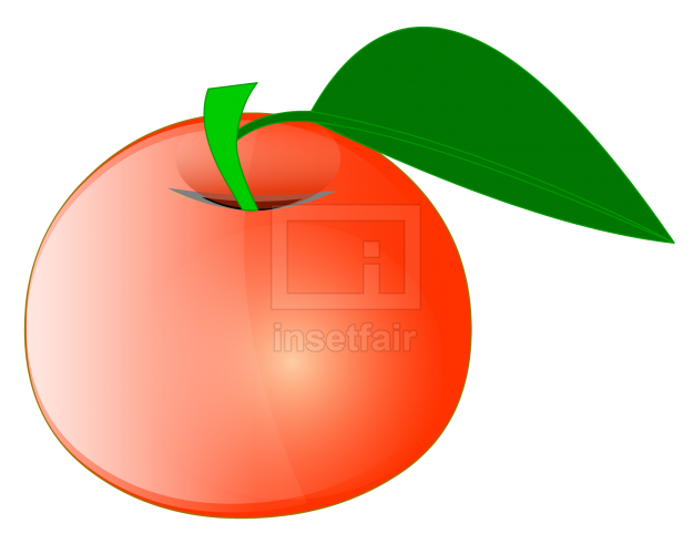 Apple with green leaf vector drawing fla royalty free png image