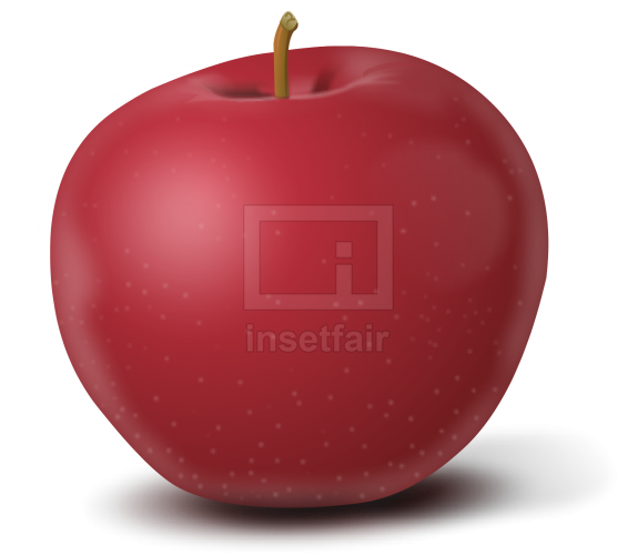 Apple vector drawing fla royalty free png image