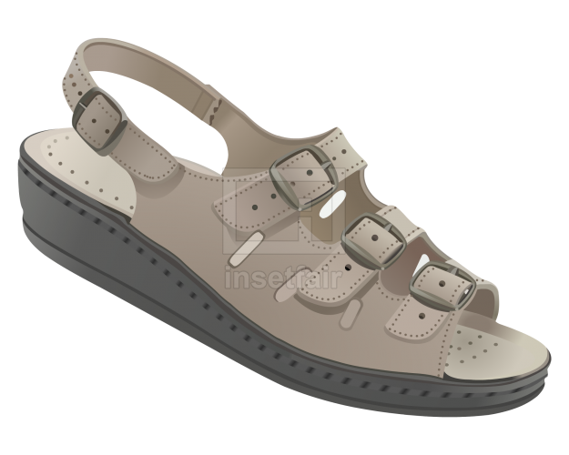 Belt chappals for men vector footwear illustration png image