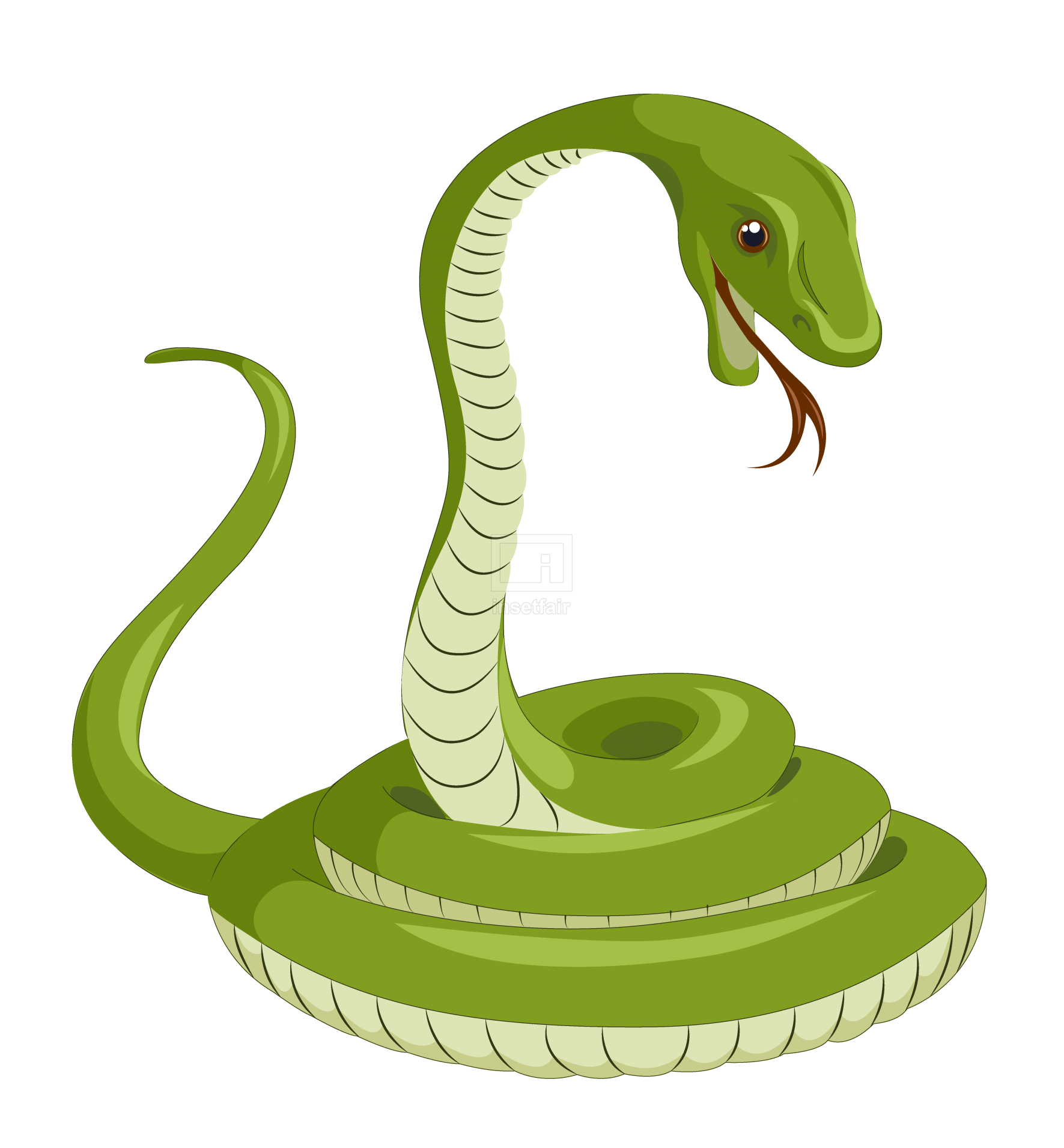 Venomous snake vector drawing illustration in png