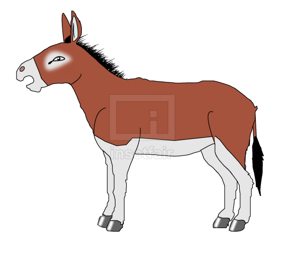 Donkey vector drawing with adobe illustrator free download png image