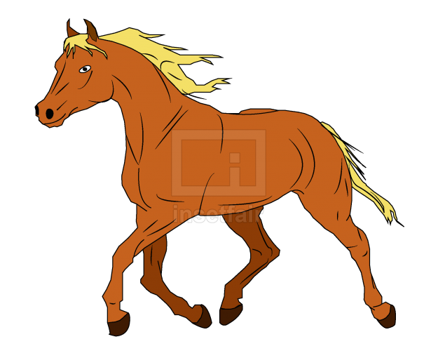 Horse vector drawing with adobe illustrator free download png image