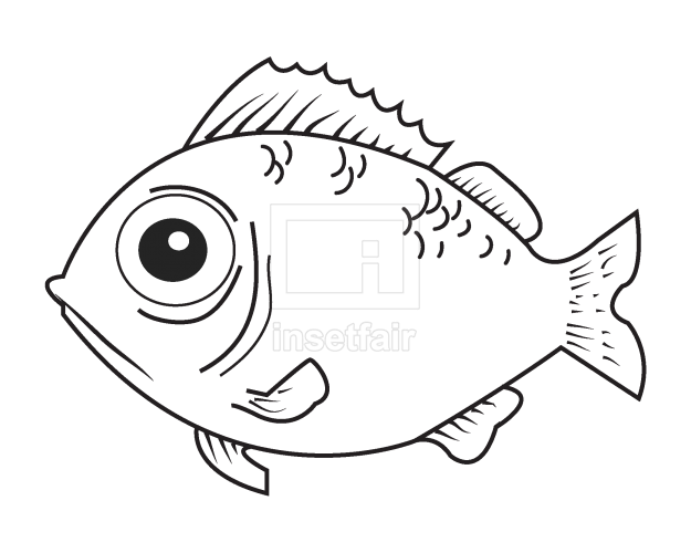 Vector fish drawing outline png stock coloring page
