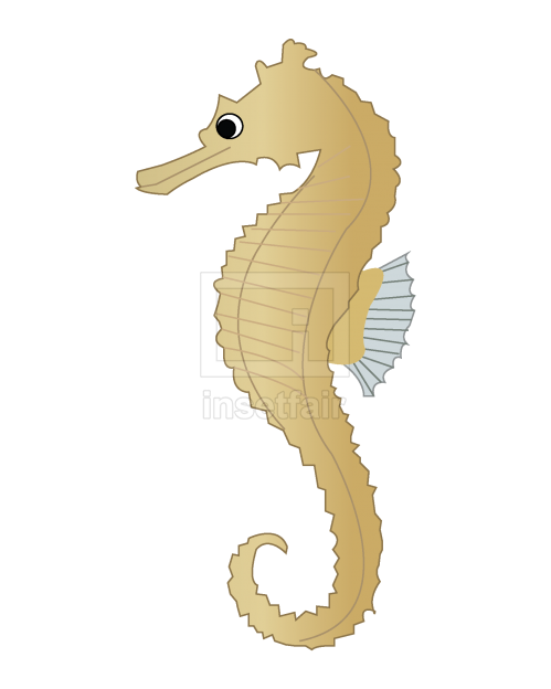 Sea horse vector cartoon clipart stock png image free download
