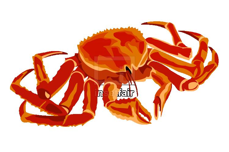 Orange crab vector illustration free png file download