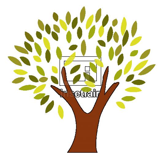 Colourful tree leaf growing logo