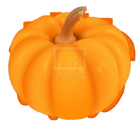 Pumpkin realistic vector illustration royalty free png stock image
