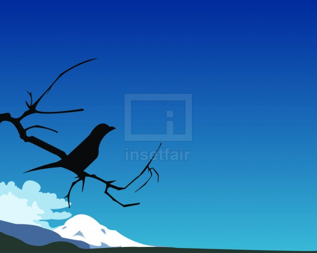 Crow on the branch with blue sky vector background